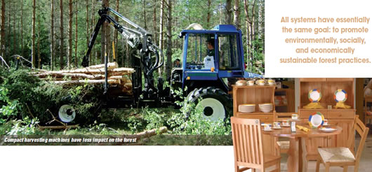Forest Certification Is The Market Buying It Woodworking Canada